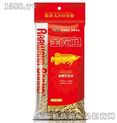 金龙鱼赤峰荞麦米(袋装400g)