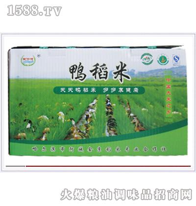 阿城鸭稻米(盒装)