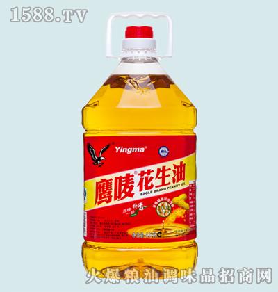 鹰唛花生油4.5L