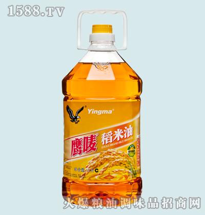 鹰唛稻米油4L