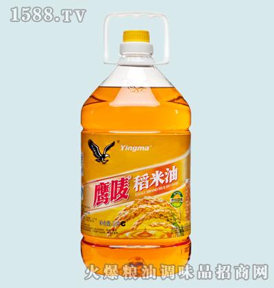 鹰唛稻米油5L