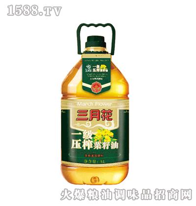 奥星 三月花-一级压榨菜籽油