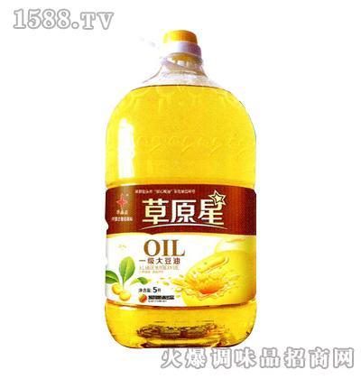 一级大豆油5L-草原星