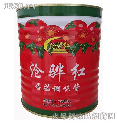 番茄调味酱3000克-沧骅红