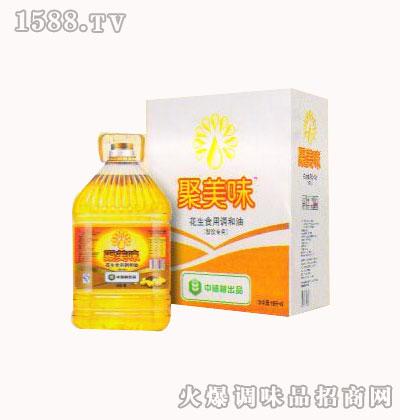 食用调和粮油(花生香型)10L-聚美味