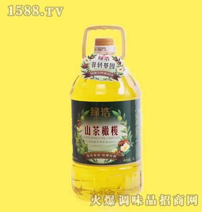 山茶橄榄调和油5L-绿浩
