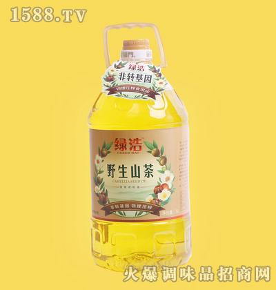 野生山茶油5L-绿浩