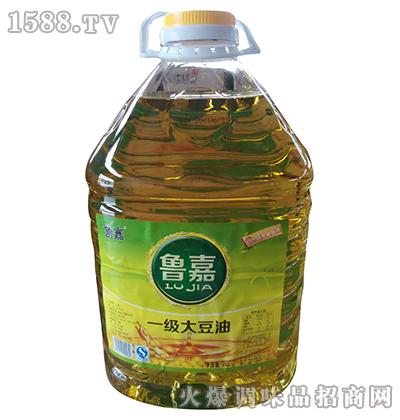 一级大豆油20L-鲁嘉