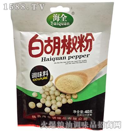 白胡椒粉40克-海全