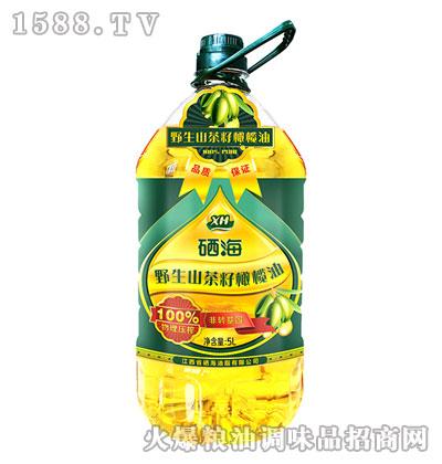 硒海野生山茶籽橄榄油5L