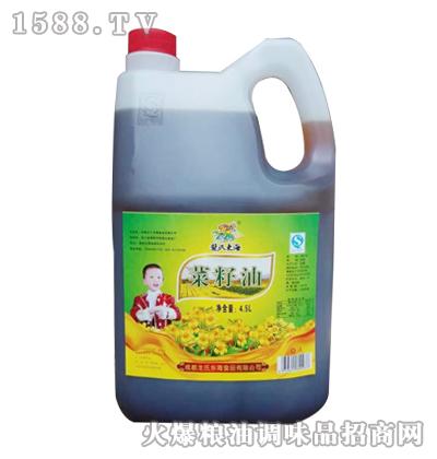 龙氏东海菜籽油4.5L