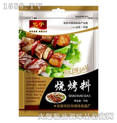 亿宁烧烤料30g