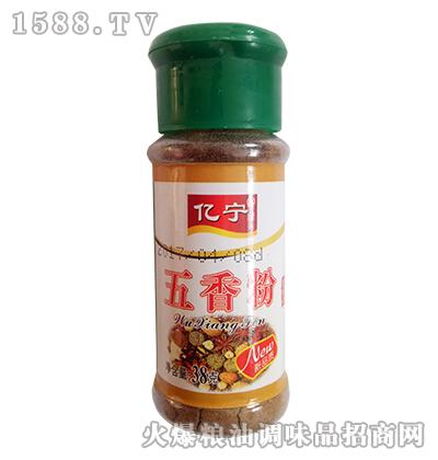 亿宁五香粉38g