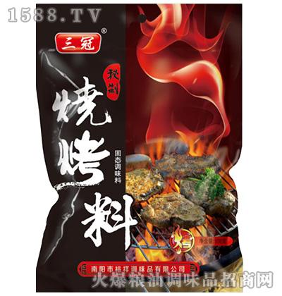 秘制烧烤料(固态调味料)108克-三冠