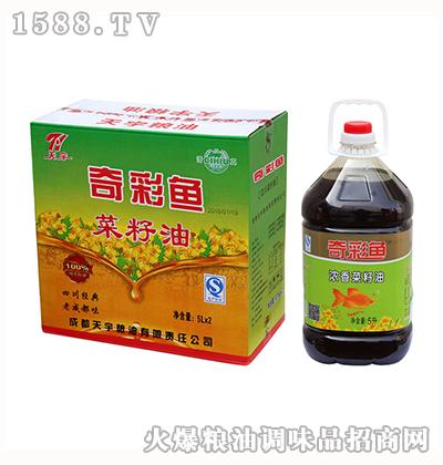纯香菜籽油(qcy01)5L-奇彩鱼
