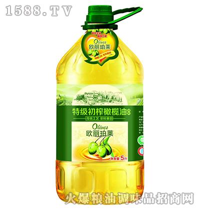 特级初榨橄榄油5L-欧丽珀莱