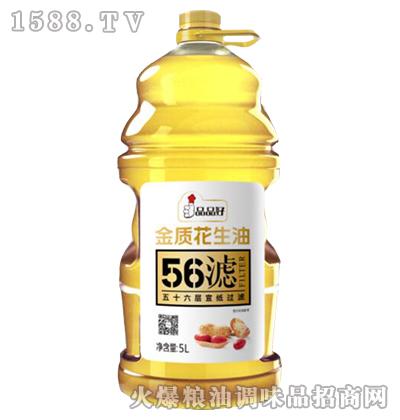 金质花生油5L-品品好