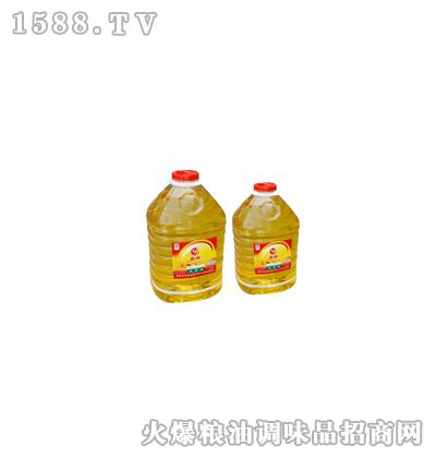 优质大豆油20L-金城