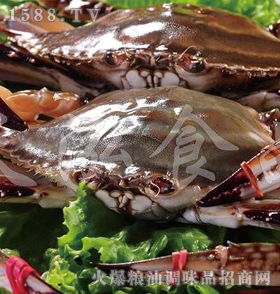 天泓-梭子蟹