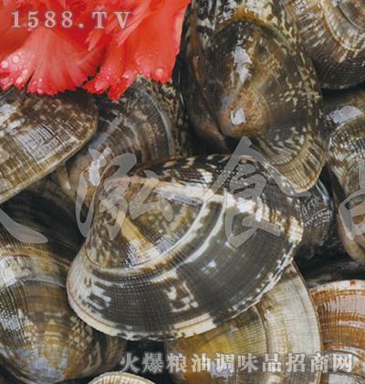 天泓-冻杂色蛤