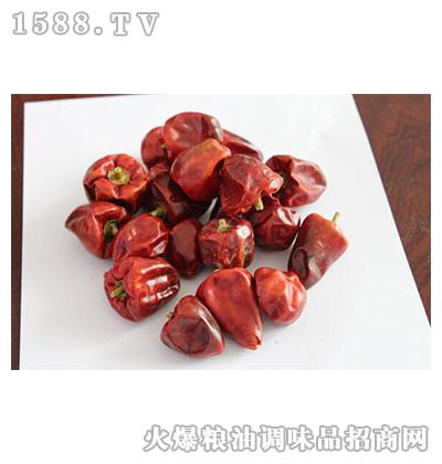 灯笼椒-腾达