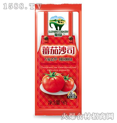 象国番茄沙司9g