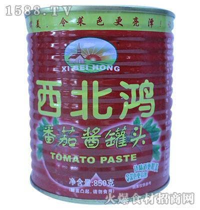 西北鸿番茄酱罐头850g