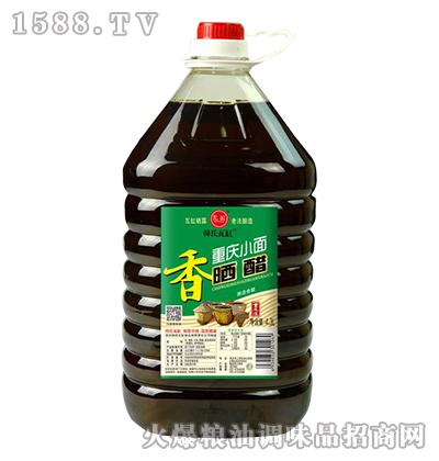 韩氏瓦缸重庆小面晒醋4.3L
