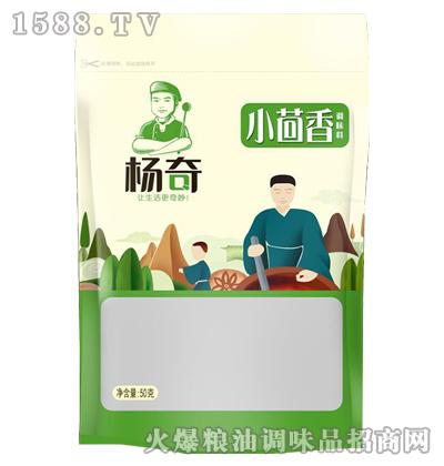 小茴香50g-杨奇