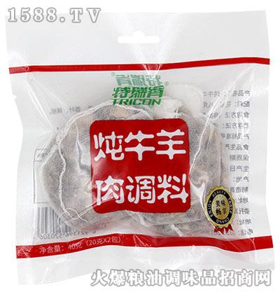 特瑞肯炖牛羊肉调料40g
