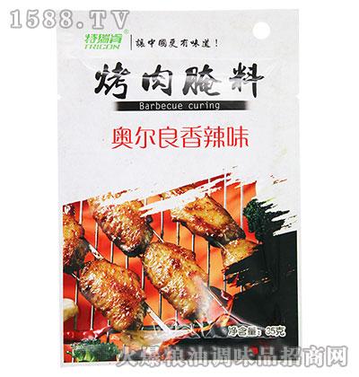 特瑞肯奥尔良香辣味烤肉腌料35g