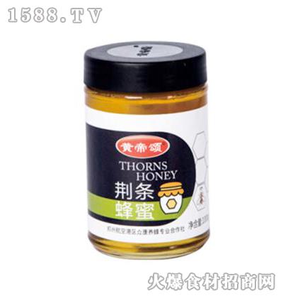 黄帝颂荆条蜂蜜1000g