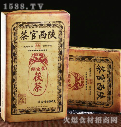 秦御蛹虫草茯茶1000g