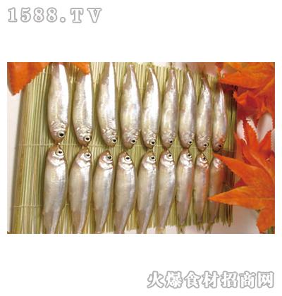 浩和食品-冻公鱼1kg