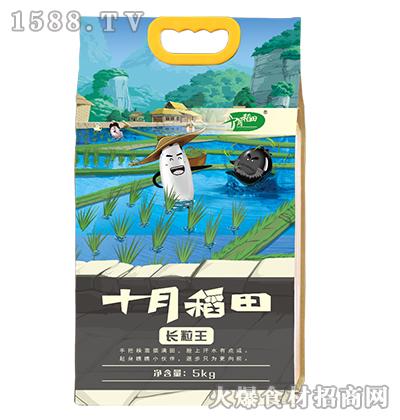 十月稻田长粒王5kg