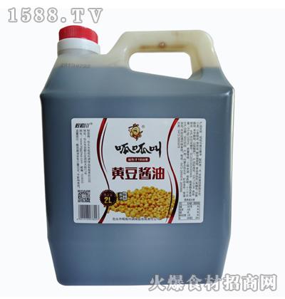 呱呱叫黄豆酱油2L