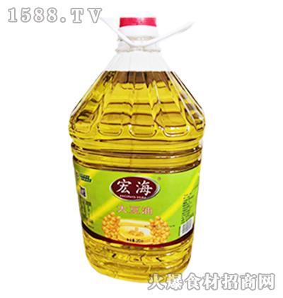 宏海大豆油20L