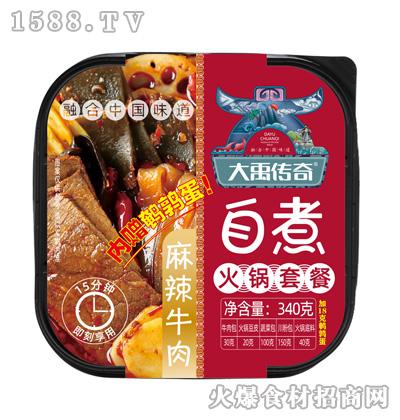 大禹传奇自煮火锅(麻辣牛肉)340克
