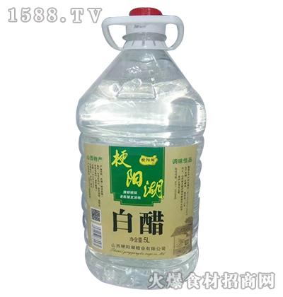 梗阳湖白醋5L
