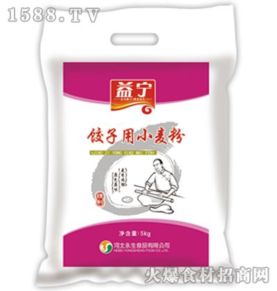 益宁饺子用小麦粉5kg