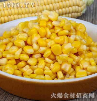 唐宏丰速冻甜玉米粒