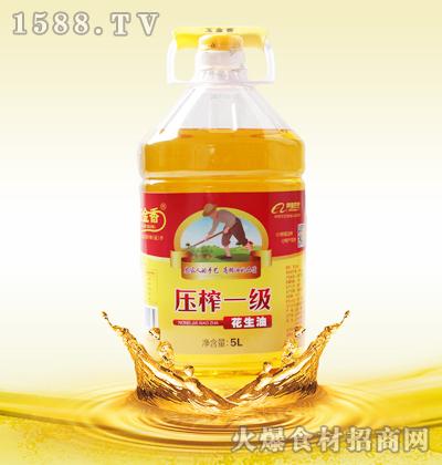玉金香压榨一级花生油-5L