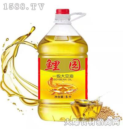 鲤园一级大豆油5L
