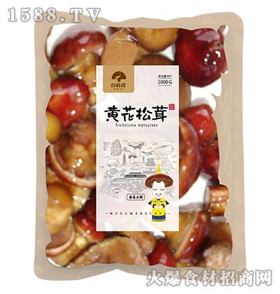 百菇宴黄花松茸1000g