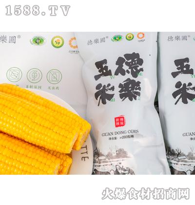 德乐玉米≥200克x1穗
