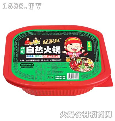亿家红自热火锅(藤椒味素菜锅)300克