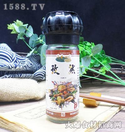 荷香田园孜然-研磨瓶【40克】