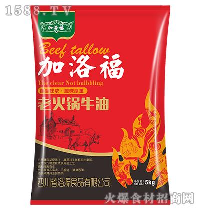 加洛福老火锅牛油火锅底料5kg