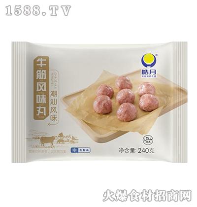 皓月牛筋风味丸(潮汕风味)240g