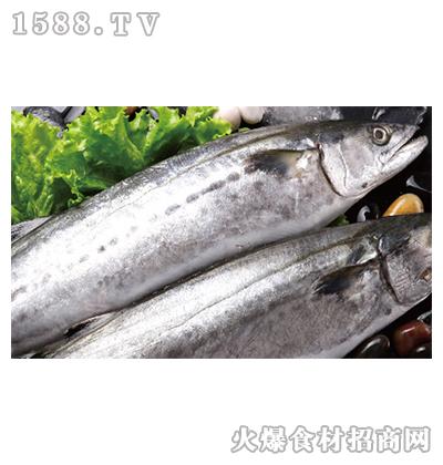 正润食品鲅鱼